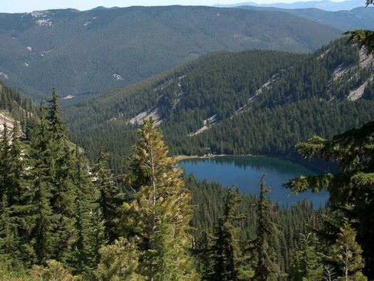 The Idaho Panhandle National Forest has a $141 million maintenance backlog. (Greg Tensmeyer/U.S. Forest Service)