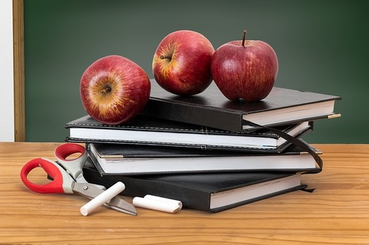 Florida Gov. Ron DeSantis announced K-12 schools will continue with distance learning for the rest of the school year due to COVID-19. (stevepb/Pixabay)