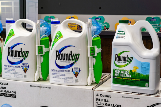 Researchers estimated 18.9 billion pounds of glyphosate, the key ingredient in the weed killer Roundup, have been used globally. (Adobe Stock)
