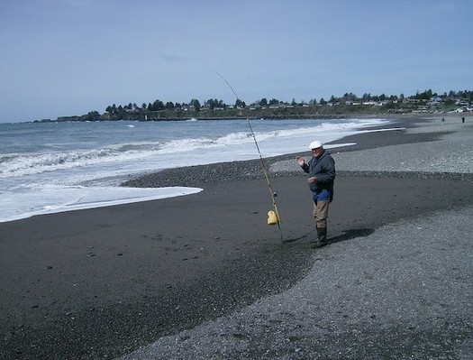 Coastal-restoration projects in Oregon would improve watersheds for fish. (Joseph Hunkins/Flickr)