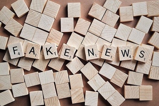 """Fake news"" is defined as fabricated information that mimics news media content in form but not in journalistic organizational process or intent. (Wokandapix/Pixabay)"