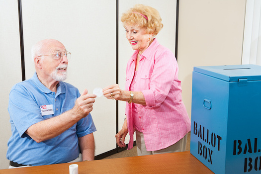 More than half of poll workers in 2016 were over the age of 60 -- a high risk group during the COVID-19 pandemic. (Lisa F. Young/Adobe Stock)