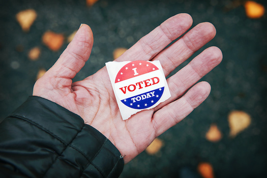 Idahoans without state identification still can vote in the Nov. 3 election if they register by Oct. 9. (soupstock/Adobe Stock)