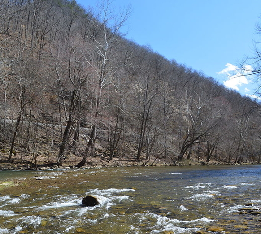 A federal judge ruled that Bluestone Coal Corp. will have to pay penalties and cleanup costs for leaking selenium from mines into McDowell County streams. (Wikimedia Commons)