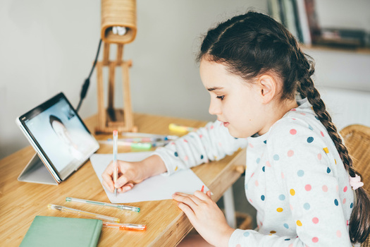 Classes in Boise will be held virtually for at least the first three weeks of the new school year. (Mariia Korneeva/Adobe Stock)