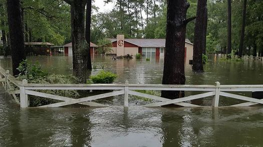 """About half of Houston-area residents have wrestled with """"powerful or severe emotional distress"""" since Hurricane Harvey hit the city in 2017, according to a new Rice University study. (episcopalrelief.org)"""