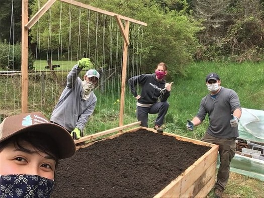 "The Olympia-based group Garden-Raised Bounty or ""GRuB"" has built more than 3,000 backyard gardens since 1993. (GRuB)"