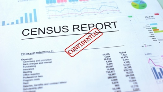 A leaked document shows concerns from within the Census Bureau that a shortened timeline for counting could result in serious errors. (AdobeStock)