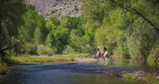 Outdoor recreation in New Mexico generates nearly $10 billion annually in consumer spending. (masoncummings/wilderness.org)