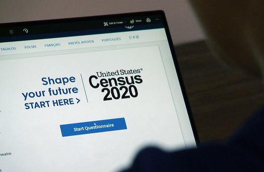 The U.S. Census Bureau provides translated web pages and guides in 59 non-English languages, including American Sign Language, as well as guides in Braille and large print. (U.S. Census Bureau)