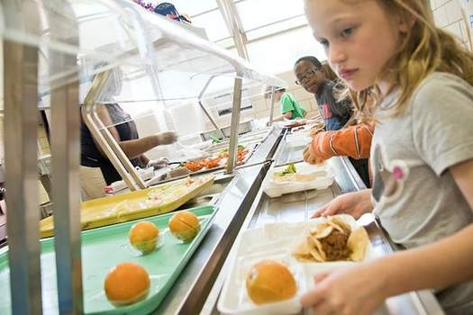 No Kid Hungry Florida has provided more than $1.7 million in grants to 38 schools and organizations.  (Centers for Disease Control/Rawpixel)