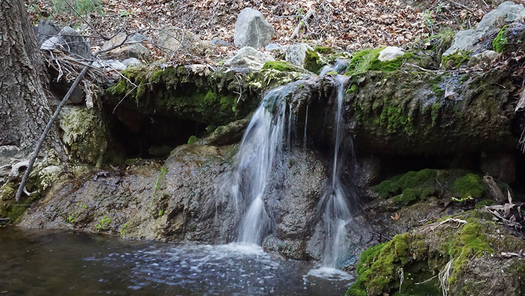 Davy Brown Creek is part of the lands that would get new protections under the Central Coast Heritage Protection Act. (Cheryl Frei)