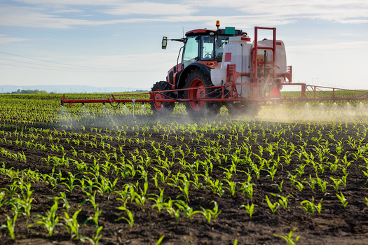 Each year, millions of acres of crops in the U.S. are sprayed with chlorpyrifos. (Adobe Stock)