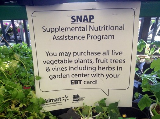 61% of SNAP recipients live in families with children. (Mike Mozart/Flickr)