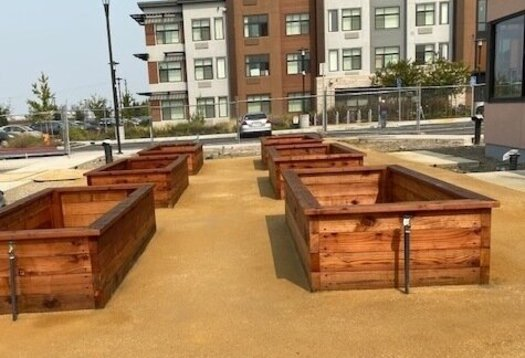 Planter boxes are under construction at the Age Well Center in Fremont, thanks to a grant from AARP California. (Suzanne Shenfil)