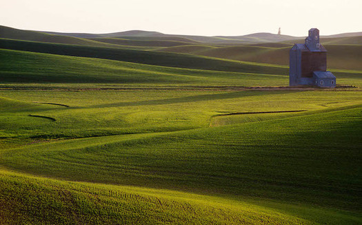 In 2018, Nebraska ranked first among states for renewed acres in the Conservation Stewardship Program, which offers cost-share and technical assistance for conservation on working lands. (Pixabay)