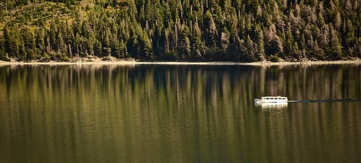 There are 17 million acres of national forest land in Montana. (Tom Driggers/Flickr)