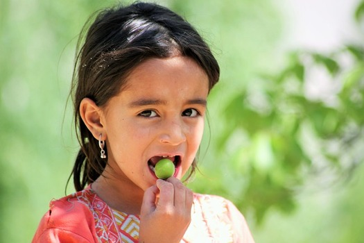 Vida Foundation's 'Take My Hand' program will serve healthy after-school snacks for Eagle County's elementary-age kids. (Dilawarali/Pixabay)