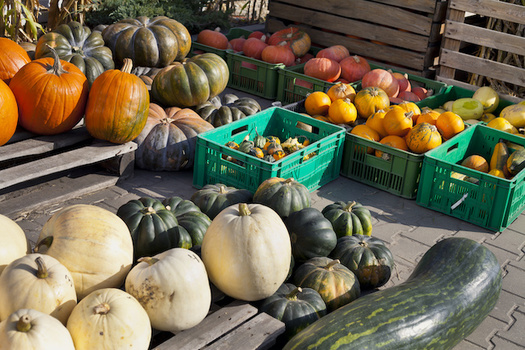 Cobblestone Farmers Market is the only sustainable farmers market in Forsyth County, N.C., says founder Margaret Norfleet-Neff. (Adobe Stock)
