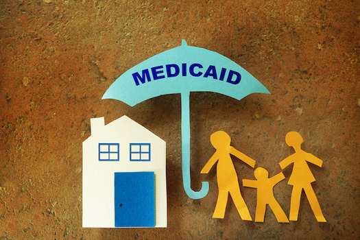 Idaho expanded Medicaid in 2020 to about 100,000 residents. (zimmytws/Adobe Stock)