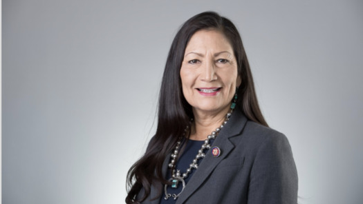 In addition to her historic nomination for Joe Biden's cabinet, Rep. Deb Haaland, D-New Mexico, made history in being one of the first two Native American women elected to Congress in 2018. (House.gov)