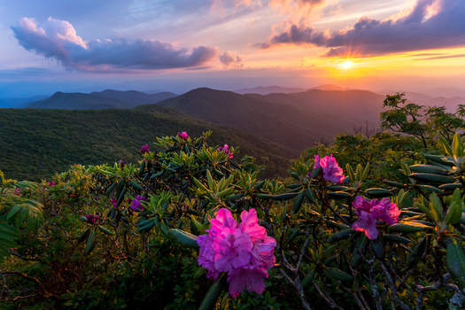 Since its creation 1990s, the North Carolina Land and Water Fund has conserved more than 1.5 million acres of land and thousands of miles of streams and rivers. (Adobe Stock)