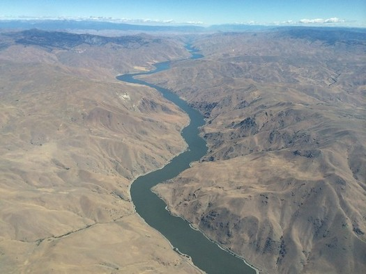 Salmon and steelhead on the Snake River have dwindled dramatically in recent decades. (Sam Beebe/Flickr)
