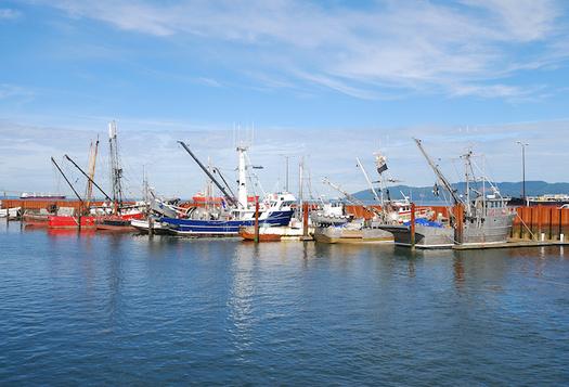 Catching salmon is big business for communities along the Oregon coast. (ftfoxfoto/Adobe Stock)
