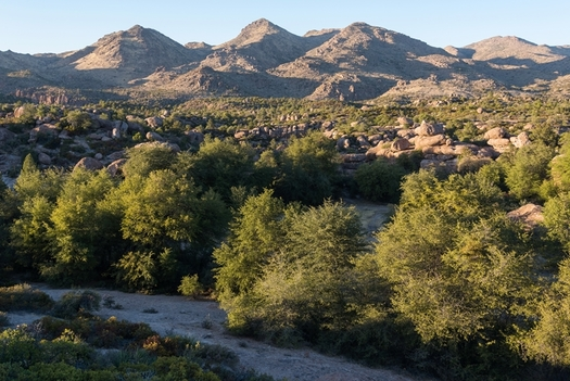 Oak Flat in the Tonto National Forest in considered sacred ground by several native tribes and also is a popular area for outdoor recreation. (Elias Butler/Wikimedia Commons)