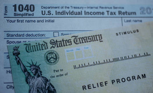Stimulus checks and tax refunds can be used to build people's emergency funds. (Evgenia Parajanian/Adobe Stock)
