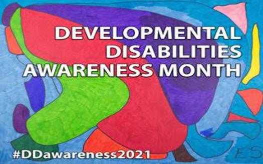 En marzo, la gente que vive con discapacidades espera destacar cómo se las han arreglado para vivir y trabajar durante la crisis de la pandemia. (IDDC)