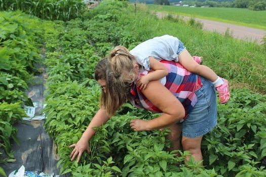 Sara George, a Wisconsin Women in Conservation regional coordinator, and her daughter check some vegetable plantings at D & S Gardens in Pepin. (Photo courtesy Kriss Marion)