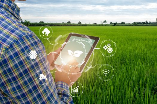 Agriculture observers say digital connectivity could be an emerging force in the coming years as farmers try to become more efficient and avoid disruptions to their work. (Adobe Stock)