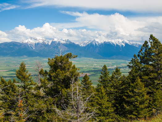 Conservation groups call a bill securing funding for public lands from the recreational marijuana program a victory for the 2021 legislative session. (Frank Jr/Adode Stock)