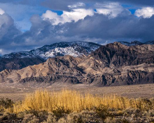 President Franklin D. Roosevelt created the Desert National Wildlife Refuge in 1936 to protect  bighorn sheep. (Kurt Kuznicki)