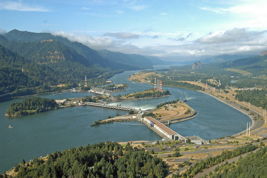 People are advised not to eat non-migratory fish within a mile upstream of Bonneville Dam, because of contamination from PCBs. (salmonrecovery/Flickr)