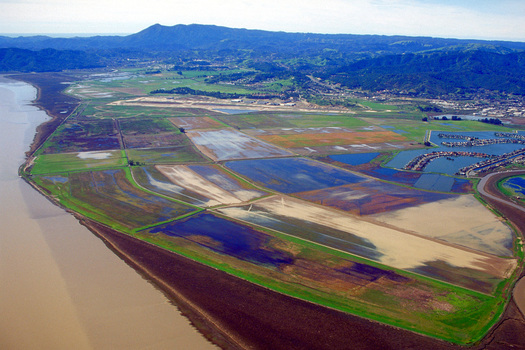 Conservation groups would like more funding to restore wetlands at the site of the former Hamilton Air Force Base in Novato. (U.S. Army Corps of Engineers)