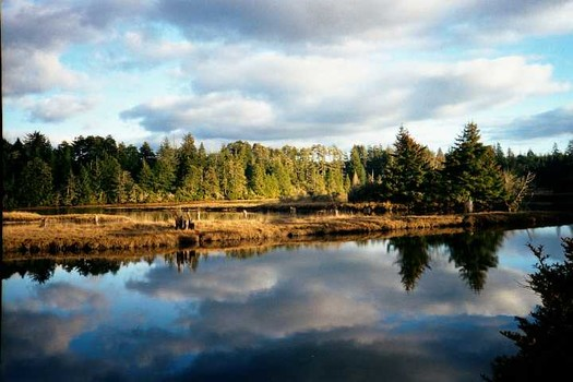 The South Slough National Estuarine Research Reserve near Coos Bay supports 65 jobs. (Werewombat/Wikimedia Commons)