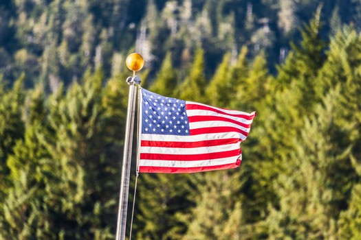 Loosened COVID-19 restrictions could draw more people to events over the July 4th weekend.(Maridav/Adobe Stock)