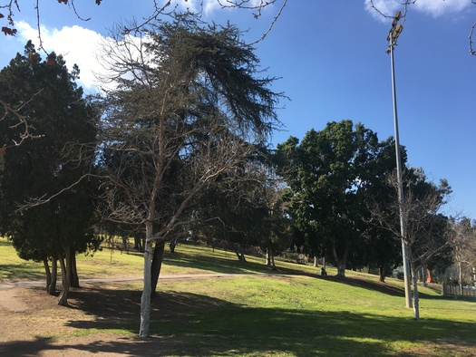 Local groups like the Sal Castro Foundation are pressing for federal recognition of Hazard Park in East Los Angeles, for its role in the 1968 student protests. (Manuel Galaviz)