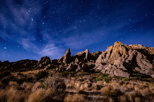 The Avi Kwa Ame area, also known as Spirit Mountain, is important habitat for the golden eagle and the desert tortoise and is home to the largest Joshua tree forest in the country. (Justin McAffee)