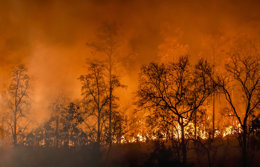 Over the past six decades, there has been a steady increase in the number of fires in the western United States, according to NASA. (Adobe Stock)