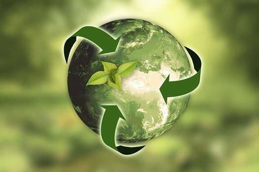 Texas is home to the Regional Center of Expertise on Education for Sustainable Development, one of only seven centers in the United States and 168 worldwide based on a United Nations program to develop global sustainability goals. (anncapictures/Pixabay)