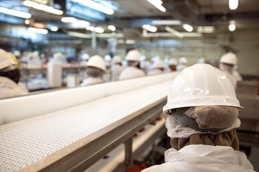 Tyson Foods brings in more than $42 billion in annual revenue. (Adobe Stock)