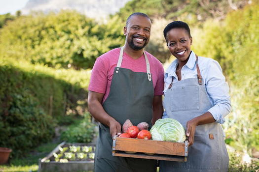 Black farmland ownership peaked in 1910 at 16 to 19 million acres, according to the USDA's Census of Agriculture. A century later, 90% of that land had been lost. (Adobe Stock)<br />