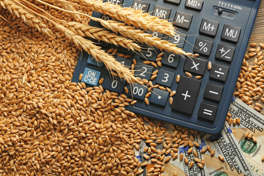 Commodity prices are higher, but advocates for smaller farmers contend that consolidation still allows a handful of corporations to reap a lot of the benefits. (Adobe Stock)
