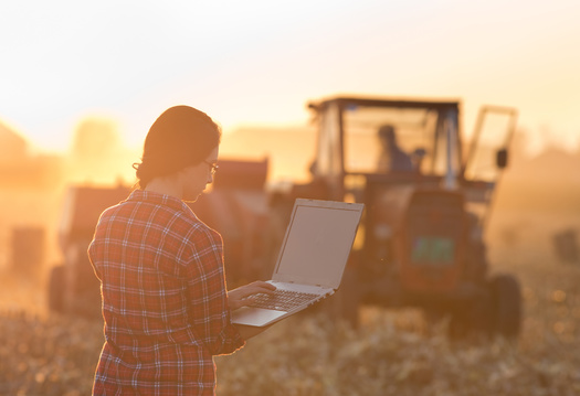 Nearly 80% of farmers do not have the option to change service providers if their connections are slow, according to a 2019 report from the United Soybean Board. (Budimir Jevtic/Adobe Stock)