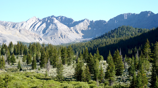 PHOTO: The proposed Italian Peaks Wilderness Area in the Beaverhead-Deerlodge National Forest. MWA photo.