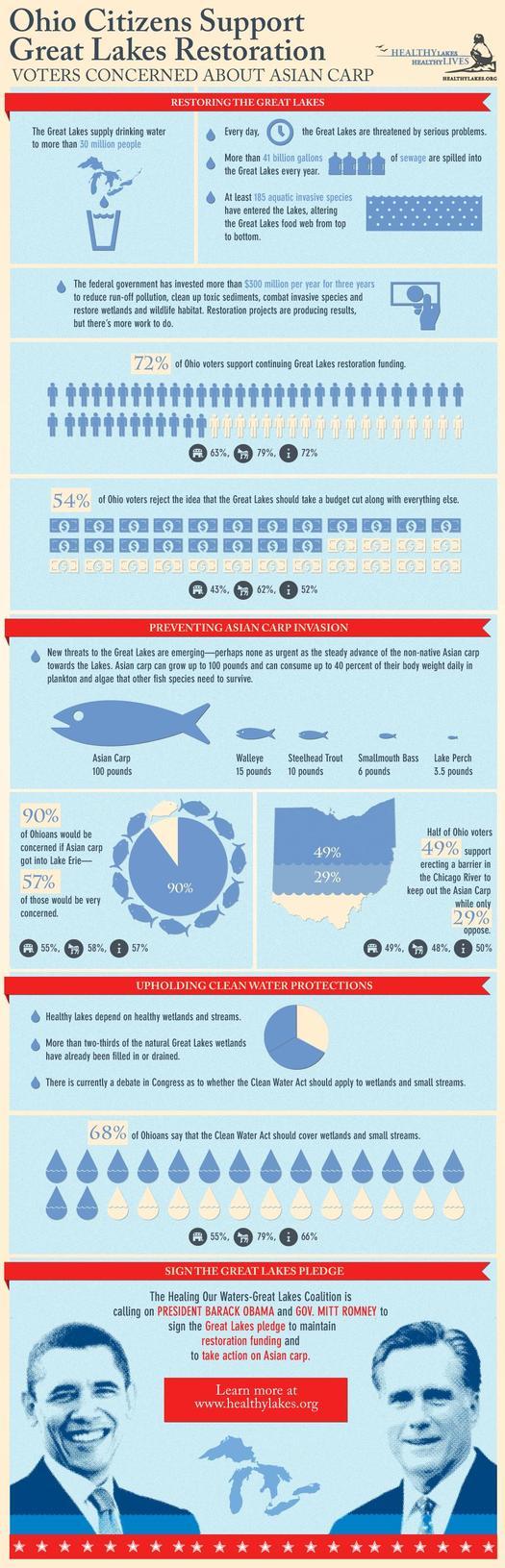 infographic on survey