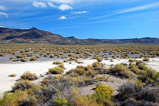 PHOTO: Desert scene near Valley Falls in Lake County, Oregon. Photo credit: Gary Halvorson, Oregon State Archives.